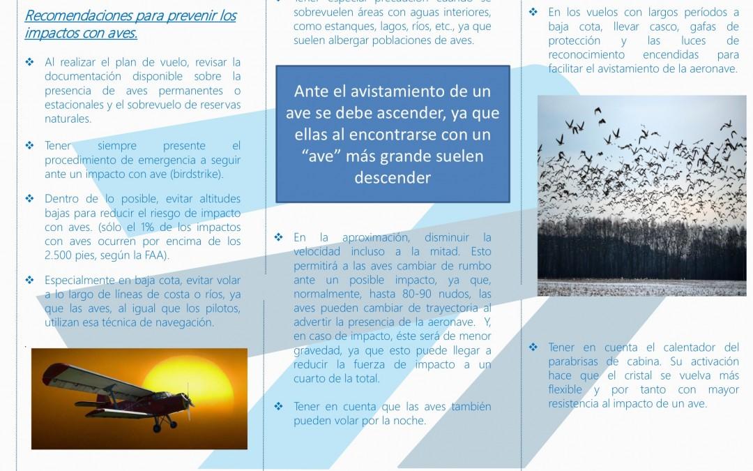AESA emite recomendaciones para evitar los impactos de avionetas con aves